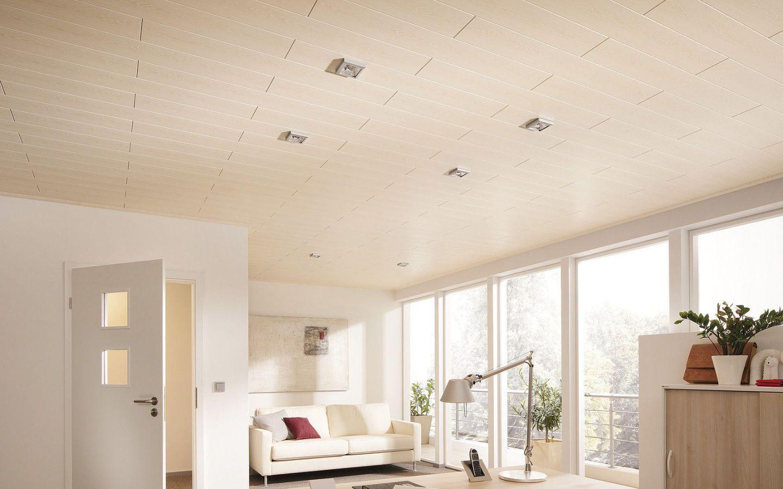 Paneele F R Wand Und Decke Design Und Funktion