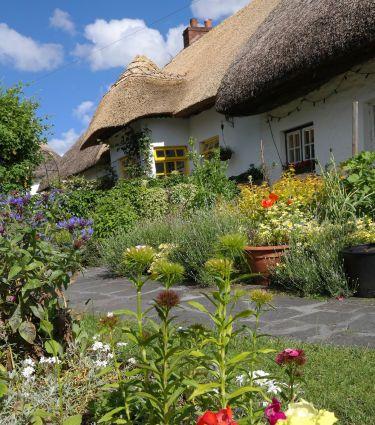 Der vorgarten gestaltung mit pflanzen und wegen - Vorgarten planen ...